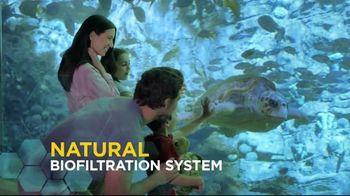 SeaWorld + Aquatica TV Spot, 'Turtle Reef: Now Open' - Thumbnail 5