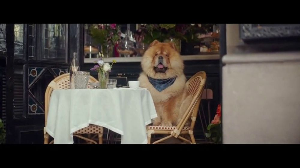 E*TRADE TV Commercial, 'Social Media Star' Song by George Clinton