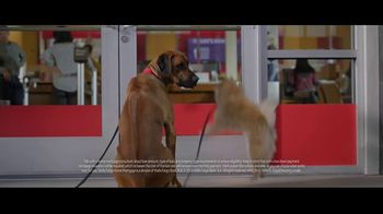 Wells Fargo Home Mortgage TV Spot, \'Lulu & Lobo Want the Unleashed Life\'