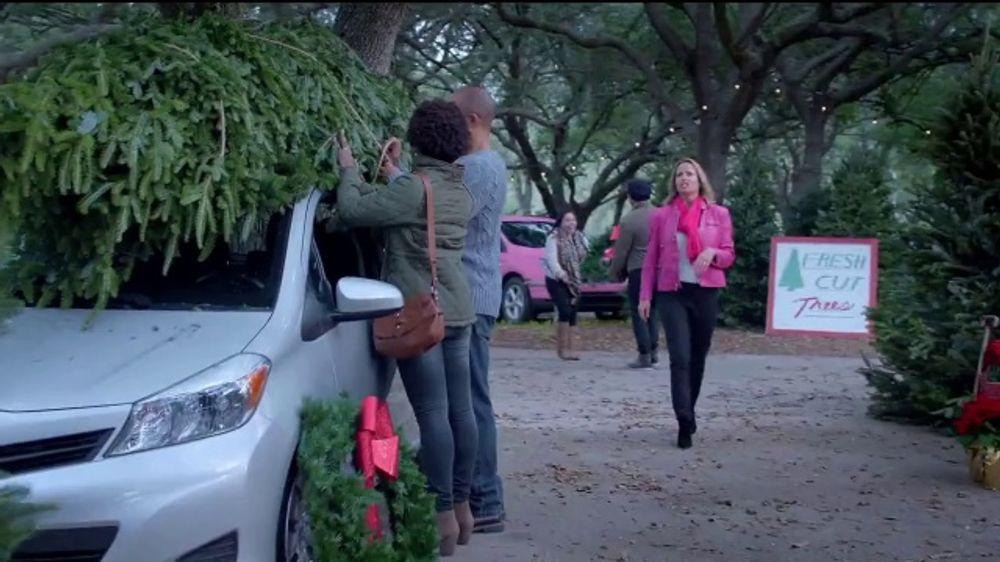 AutoNation TV Commercial, '2018 Toyota RAV4 XLE'