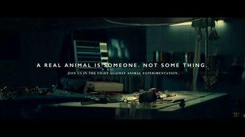PETA TV Spot, 'Teddy Tackles Trauma' - Thumbnail 10