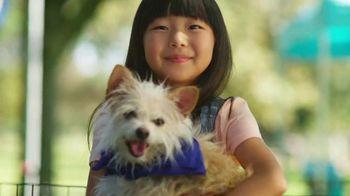 Subaru Share the Love Event TV Spot, 'New Friends' [T2]
