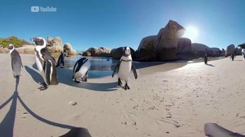 Oculus Go TV Spot, 'Wiz Watches Penguins' Featuring Wiz Khalifa - Thumbnail 7