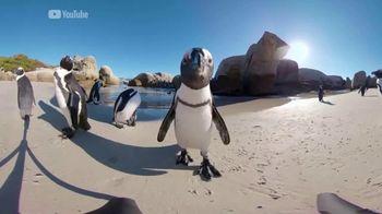Oculus Go TV Spot, 'Wiz Watches Penguins' Featuring Wiz Khalifa - Thumbnail 8