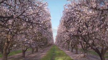 Almond Breeze TV Spot, 'California Almonds' - Thumbnail 1