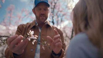 Almond Breeze TV Spot, 'California Almonds' - Thumbnail 4