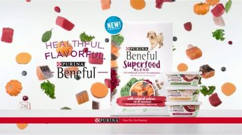 Purina Beneful Superfood Blend TV Spot, 'Nutrient-Rich' - Thumbnail 9