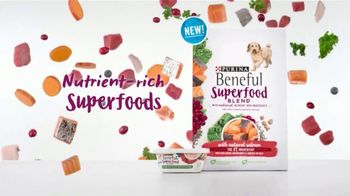 Purina Beneful Superfood Blend TV Spot, 'Nutrient-Rich' - Thumbnail 3