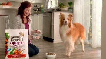 Purina Beneful Superfood Blend TV Spot, 'Nutrient-Rich' - Thumbnail 4
