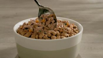 Purina Beneful Superfood Blend TV Spot, 'Nutrient-Rich' - Thumbnail 5