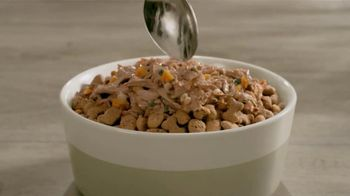 Purina Beneful Superfood Blend TV Spot, 'Nutrient-Rich' - Thumbnail 6