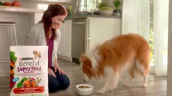 Purina Beneful Superfood Blend TV Spot, 'Nutrient-Rich' - Thumbnail 7