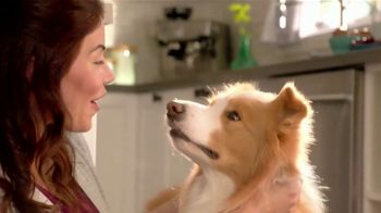 Purina Beneful Superfood Blend TV Spot, 'Nutrient-Rich' - Thumbnail 8