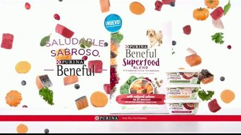 Purina Beneful Superfood Blend TV Spot, 'Súper saludable' [Spanish] - Thumbnail 8