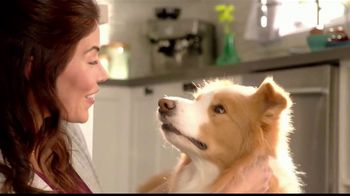 Purina Beneful Superfood Blend TV Spot, 'Súper saludable' [Spanish] - Thumbnail 7