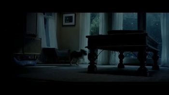 PetArmor TV Spot, 'Storm'