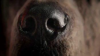 PETCO Orijen TV Spot, 'Sniff'
