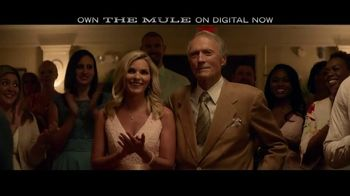 The Mule Home Entertainment TV Spot - 510 commercial airings