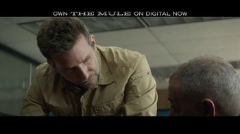 The Mule Home Entertainment TV Spot - Thumbnail 4