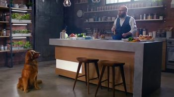 Bush's Baked Beans TV Spot, 'Savory Loves Sweet Hamburger'