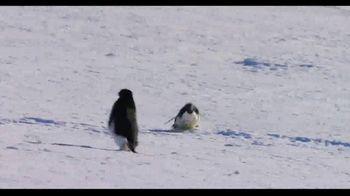 Penguins - Alternate Trailer 6