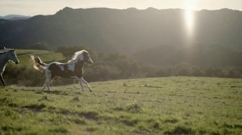 Subaru Forester TV Spot, 'National Geographic: Rebecca Wolff' [T1] - Thumbnail 7