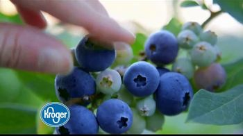 The Kroger Company TV Spot, 'Frescura' [Spanish] - Thumbnail 5