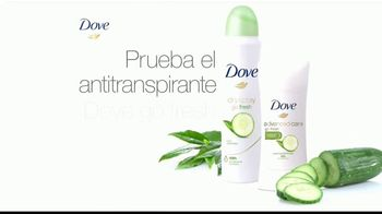 Dove Go Fresh TV Spot, '¿Buscas algo fresco?' [Spanish]
