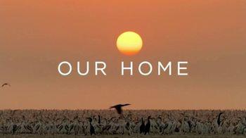Netflix TV Spot, 'Our Planet' - Thumbnail 8