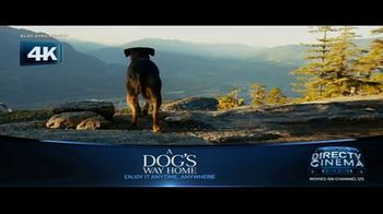 DIRECTV Cinema TV Spot, 'A Dog's Way Home' - Thumbnail 3