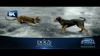 DIRECTV Cinema TV Spot, 'A Dog's Way Home' - Thumbnail 5