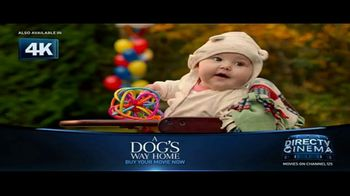 DIRECTV Cinema TV Spot, 'A Dog's Way Home' - Thumbnail 6