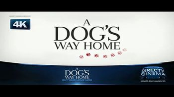 DIRECTV Cinema TV Spot, 'A Dog's Way Home' - Thumbnail 7
