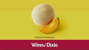 Winn-Dixie TV Spot, 'Ground Beef and Colossal Cantaloupes' - Thumbnail 5
