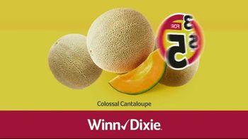 Winn-Dixie TV Spot, 'Ground Beef and Colossal Cantaloupes' - Thumbnail 6