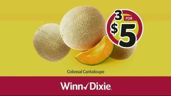 Winn-Dixie TV Spot, 'Ground Beef and Colossal Cantaloupes' - Thumbnail 7