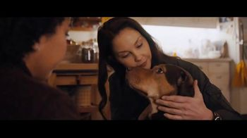 A Dog's Way Home - Alternate Trailer 10