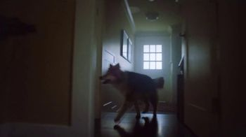 Lincoln Wish List Sales Event TV Spot, 'A Dog's Wish' Song by Brook Benton [T2] - Thumbnail 2