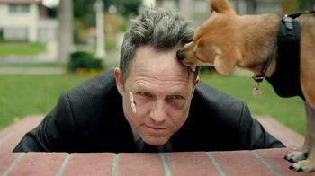 Allstate TV Spot, \'Mayhem: Overly Confident Dog Walker\' Featuring Dean Winters