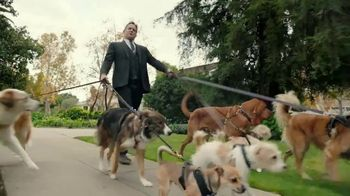 Allstate TV Spot, 'Mayhem: Overly Confident Dog Walker' Featuring Dean Winters - Thumbnail 2