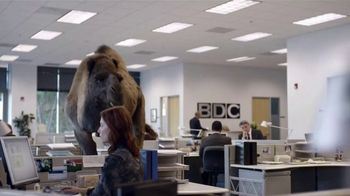 GEICO TV Spot, 'The Best of GEICO: Hump Day' - Thumbnail 4
