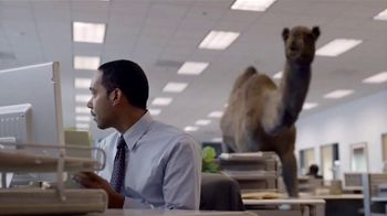 GEICO TV Spot, 'The Best of GEICO: Hump Day' - Thumbnail 5