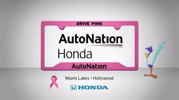AutoNation 72 Hour Flash Sale TV Spot, '2019 Honda Accord' - Thumbnail 5