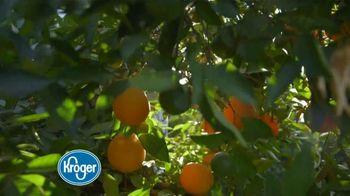 The Kroger Company TV Spot, 'Peak of the Season' - Thumbnail 1