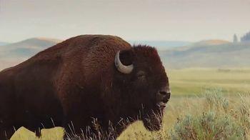 Buffalo Wild Wings TV Spot, 'March Madness: Birthday' - Thumbnail 5
