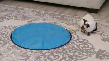 CatchMe Kitty TV Spot, 'Turn a Lazy Kitty Into a Crazy Kitty' - Thumbnail 6