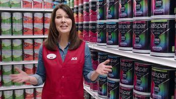 ACE Hardware BOGO Paint Sale TV Spot, 'Extra Mile Promise' - 2277 commercial airings