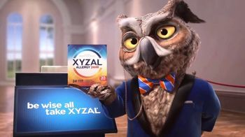 XYZAL Allergy 24HR TV Spot, 'How Does XYZAL Compare?' - 15105 commercial airings