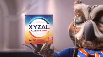 XYZAL Allergy 24HR TV Spot, 'How Does XYZAL Compare?' - Thumbnail 8