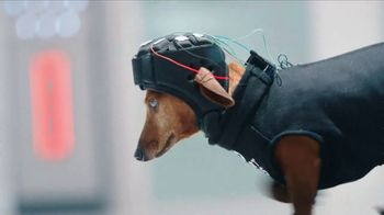 GEICO TV Spot, 'Introducing Smartdogs' - Thumbnail 4